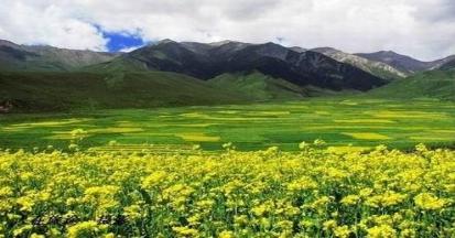青海湖,茶卡鹽湖,祁連三日游